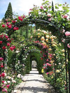 Rosas en diademas de la Alhambra, Granada, España.
