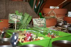 Candy bar at reptile party. True pinterest!!! Reptiles, Reptile Party, Bar, Jesus, Candy, Ainsi, Place, Parties, Party Ideas