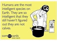 Humans are the most intelligent species on earth but they still haven't figured out they are not calves - not your mother not your milk - #vegan
