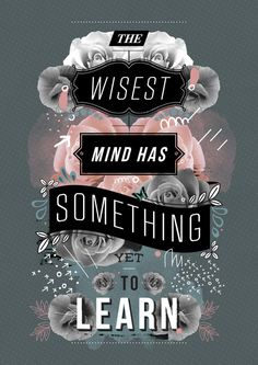The wisest mind has something yet to learn https://society6.com/product/a-beautiful-mind_print?curator=themotivatedtype