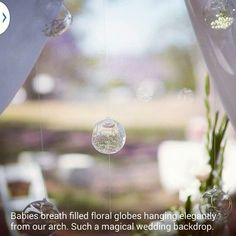 Floating floral filled glass globes creating a magical wedding backdrop by www.brisbaneweddingdecorators.com.au