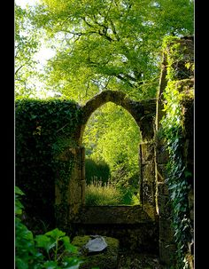 Stone Entrance..Brittany France One of these days I'll step through The vine covered stone portal And make my way through the forest black Nary a fare well Never look back