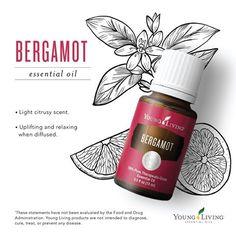 Young Living Essential Oils:  Bergamot | WWW.THESAVVYOILER.COM