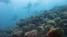 Long Off-Limits, Ancient Greek Shipwreck Opens to Divers as Underwater Museum Shipwreck, Archaeological Site, Greek Islands, Plan Your Trip, Ancient Greek, Sea Creatures, Scuba Diving, Picture Show, Wonderful Places