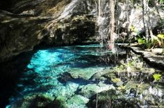 Grand Cenote, Tulum - Mexico - Download in HD free @ http://www.lawlor.me - Landscape Photography