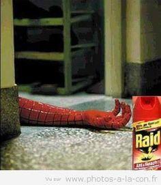 image drole spiderman