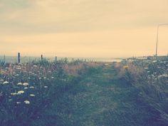 Rottingdean