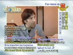Professor Francione was interviewed by the On-Line program, Animal World, on April 15, 2008, in Paris, France. The primary focus of the interview concerns the importance of veganism as the moral baseline of the rights/abolitionist movement.