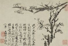 Shitao 石濤 (1642–1707), Plum Blossoms, ca. 1705–07, Qing dynasty (1644–1912). Album leaf; ink on paper. Painting: 20.2 x 29.7 cm. (7 15/16 x 11 11/16 in.). Leaf: 59.6 x 36.4 cm. (23 7/16 x 14 5/16 in.). Gift of the Arthur M. Sackler Foundation for The Arthur M. Sackler Collection. y1967-15 h. Princeton University Art Museum.