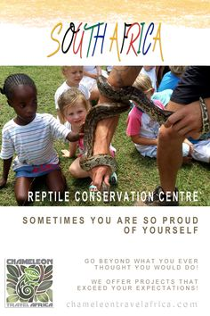 This project is an absolute 'must-do' for volunteers who seek an introduction into the world of  reptiles and those who want to deepen their knowledge and experience. With ample opportunity to work hands on with a variety of species, both harmless and venomous, this project comes highly recommended, and will most definitely leave you with a whole new level of  appreciation for these creatures! #reptile #snake #crocodile #challenge #education