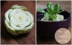 17 Apart: How To: Regrowing Bok Choy