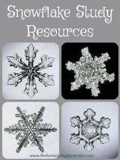 Snowflake Study Resources - The Homeschool Scientist - - Today, I wanted to share some snowflake study resources we used to learn more about snowflakes and some others that would be great in your snowflake study. 1st Grade Science, Teaching Science, Science Activities, Science Projects, Science Inquiry, Science Fun, Science Resources, Teaching Tools, Teaching Ideas
