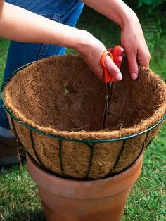 Growing bulbs in baskets Line Bottom of Wire Hanging Basket Container Flowers, Flower Planters, Container Plants, Container Gardening, Hanging Flower Pots, Plants For Hanging Baskets, Hanging Planters, Hanging Gardens, Garden Basket
