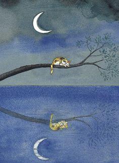 A través de la protagonista, el autor dibuja con palabras los sentimientos de melancolía, ansiedad, aflicción y frustración con su estilo poético. Mi querido gatito, #JimmyLiao