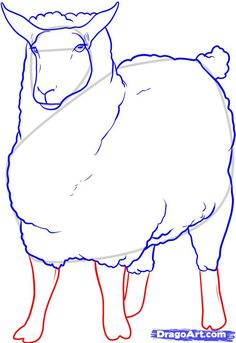 how to draw a sheep step 9