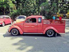 Bug Truck