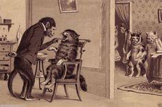 VICTORIAN MONKEY CAT DENTIST DENTISTRY TEETH MEDICINE SURGERY INSTRUMENTS TOOLS #Realism