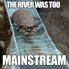 Hipster Otter