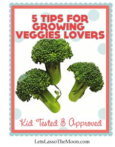 Here are a few tried and true tips for accomplishing this seemingly challenging goal.    One of my favorite, sure fire ways to get kids to not only eat, but enjoy veggies is to.... I'd love to hear any additional suggestions you have, let's chat in the comments below.