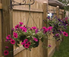 Simple Fence Post Planters for Petunias