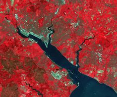 Software Sustainability in Remote Sensing