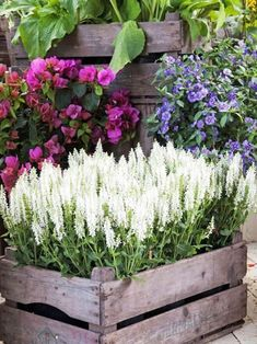 A cottage garden is every nature lover's dream and must be executed if greens and nature keep you going in life. Up your garden charm with these easy DIY cottage garden ideas Unique Garden, Diy Garden, Garden Planters, Patio Gardens, Garden Bed, Container Flowers, Container Plants, Plant Containers, Diy Flowers