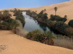 Erg Awbari OasisUbari Lakes are part of Erg Awbari Oasis in the Sahara. Located near Fezzan and north of Germa in Libya, these salt water lakes are a Labo Photo, Beautiful World, Beautiful Places, Desert Photography, Paraiso Natural, Breath Of The Wild, Wonders Of The World, Places To Go, Scenery