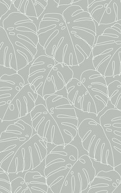 Deliciosa is a unique Monstera leaf pattern that pairs tropical plant decor with a minimalist style. This design has been created with one continuous line drawing – meaning that all of the leaves are illustrated without taking the pen away from the paper. The result is a repeat pattern wallpaper that feels effortlessly modern. The white lines stand out subtly against the soft sage green background, in a way that won't feel overpowering. Tropical Wallpaper, Beach Wallpaper, Green Wallpaper, Flower Wallpaper, Pattern Wallpaper, World Map Wallpaper, Forest Wallpaper, Drawing Wallpaper, Continuous Line Drawing