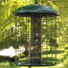 4 Port 2 Year Warranty Green Ambitious Ring-pull™ Niger Feeder