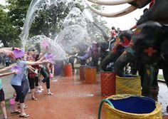 Elefantes y un grupo de turistas se lanzan agua durante los preparativos del Songkran, la festividad... - RUNGROJ YONGRIT