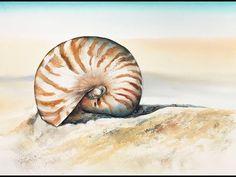 Seashell in Watercolors Painting Tutorial - YouTube