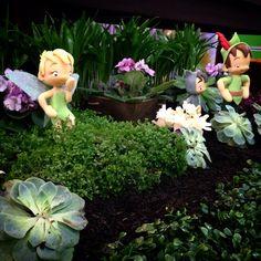Festa Peter Pan e Sininho