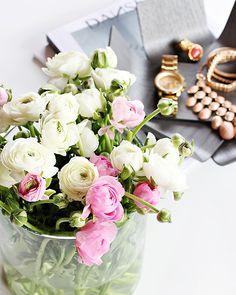 flowers one_kings_lane_tEdina Saether photographyastemakerflowers_ranunculus