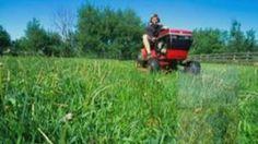 Cheap Riding Lawn Mowers