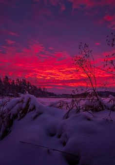 Beautiful Red & Purple sky on a winter evening Beautiful Sunset, Beautiful World, Beautiful Places, Nature Pictures, Cool Pictures, Beautiful Pictures, Landscape Photography, Nature Photography, Winter Schnee