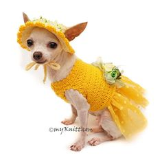 Super Cute Yellow Dog Dress Tutu with Matching Sun Hat. New and unique collection from Myknitt Designer Dog Clothes. Perfects for party, photo shoot, or fashion show. Please kindly check your pets measurements with my pattern size chart to make sure the item fits before ordering. XXS ($40)