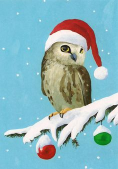 Owl 15 Boxed Christmas Cards by Allport Editions 719495508495 Boxed Christmas Cards, Christmas Bird, Whimsical Christmas, Merry Christmas To All, Christmas Animals, Painted Christmas Cards, Christmas Crafts, Vintage Christmas Images, Christmas Pictures