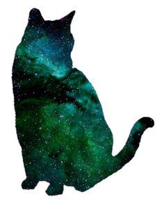 space in cat
