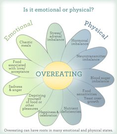 Emotional Eating infographic. Good visual! When in doubt, I take 10 minutes. Write down feelings, then share what I am thankful for. Waiting for the physical signals of hunger can be hard at times, but we all deserve to honor our bodies! :)