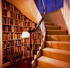 This is pretty much what I see, only with the stairs more open/modern and the shelving being more organic and following the stairs to the 2nd floor. Dentist chair underneath and it's the perfect book cove!