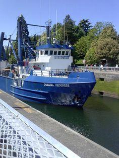 Ballard locks, Seattle WA