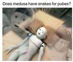 [/r/dank_meme] Medusa's pubes (by Trisha.jpg)