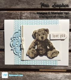 Stampin' Cat Baby Bear Bundle Of Love