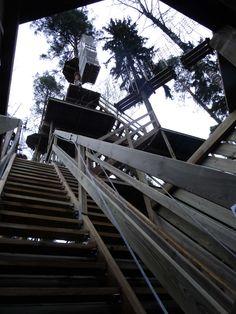 Seikkailupuisto Huippu, raput alaradoille. Tree top Adventure Huippu, stairs leading to the base routes. Hochseilgarten Huippu, diese Treppe führt zu den Routen.