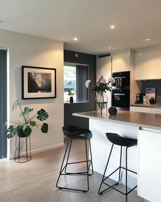 Planta, parede de cor contrastante – new decorating ideas - Modern Kitchen Interior, Home Interior Design, Kitchen Decor, Kitchen Ideas, Diy Casa, Home Decor Inspiration, Decor Ideas, Room Ideas, Home And Living