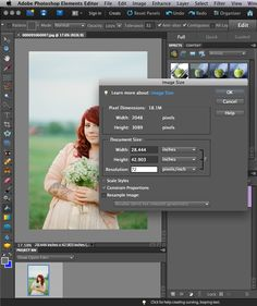 How To Batch Edit, watermark and organize photos all at once using Photoshop Elements