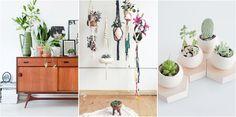 10 preciosas formas de decorar con plantas