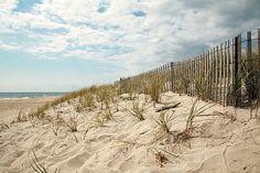 The Hamptons.