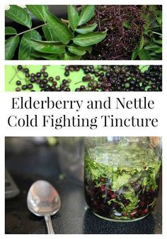 How to Make Your Own Cold and Flu Fighter with Fresh Elderberries. Easy tincture recipe that you can use with fresh, dried, or frozen elderberries. Helps with immunity! Diarrhea Remedies, Cough Remedies, Home Remedies, Health Remedies, Flu Food, Food Intolerance, Natural Cures, Natural Treatments, Natural Healing