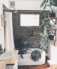 Ignore the tile. Pinning just for plants in the bathroom (but not in the bathtub) ;-)